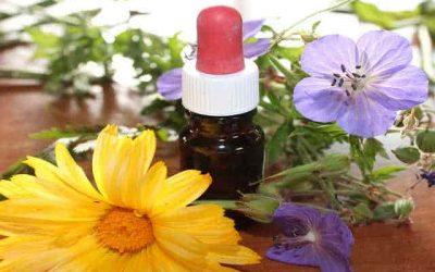 Main Benefits of Aromatherapy