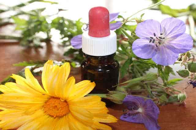 Main Benefits of Aromatherapy